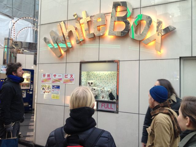 Walking tour with Terre  Thaemlitz,  Shibuya